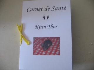 carnet_sante_rat_domestique_5