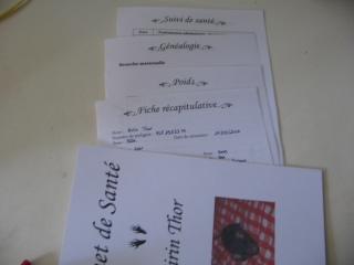carnet_sante_rat_domestique_1